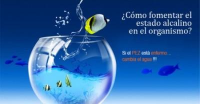 La célula vive como un pez en su acuario. Su vida depende de la pureza del agua en la que nada.